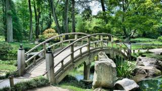 bridge connecting a Zen garden