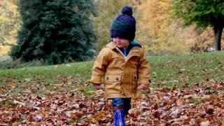 little boy walking in the fallen leaves