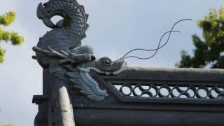 chinese dragon wall