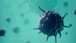 virus disease