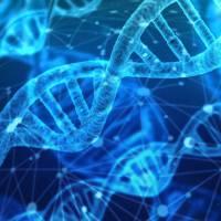 dna genetic code