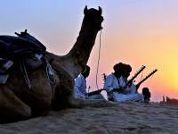 camel with theowners in the dessert at nightfall
