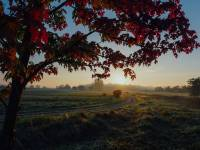 cool fall day sun rising