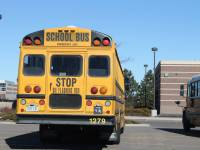 school bus in parking lot