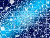 web network in an AI environment